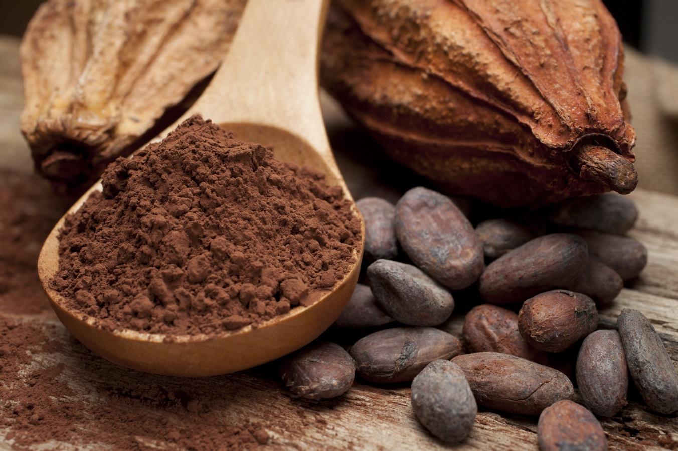 Kakaóbab és kakaóőrlemény