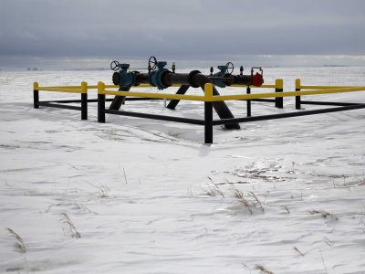 A WTI-olaj árak stabilak maradnak. Forrás: Businessinsider.com, Reuters, Morgan Stanley; Conclude Zrt.