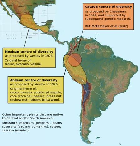A kakaó (Theobroma cacao) géncentrumai. forrás: Samantha Madell ; Forrás: Hardman & Co., Conclude Zrt.