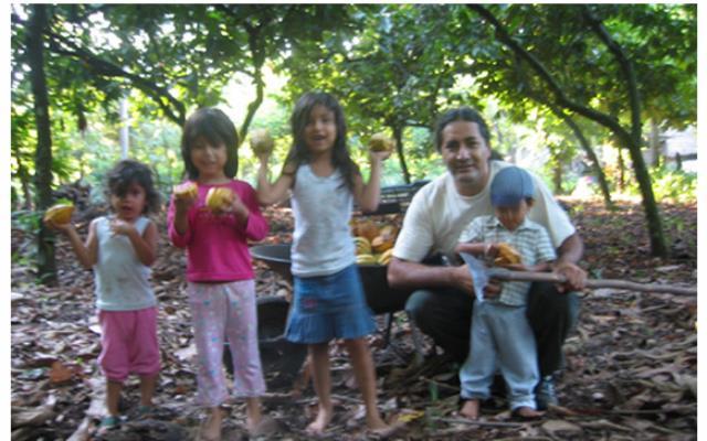 Criollo kakaót termesztő maja család forrás: Royal cacao of Xoconusco